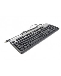 HP KU-0316 Black/Silver USB Wired